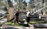 آرامستان صالح آباد توسط شهرداری غبارروبی شد + گزارش تصویری