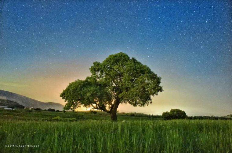 ثبت تصاویری زیبا از لحظه قبل طلوع آفتاب در شهر ایلام *گزارش تصویری از مصطفی پورتیمور