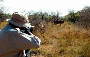 چهار شکارچی غیرمجاز در ایلام دستگیر شدند